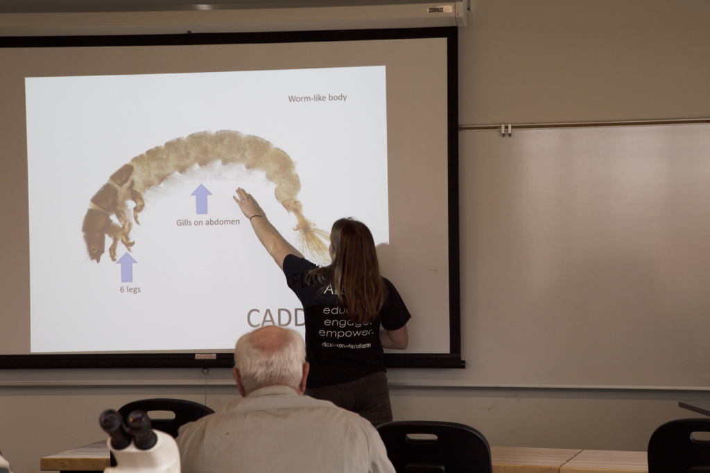 watershed coordinator pointing to caddisfly on powerpoint screen