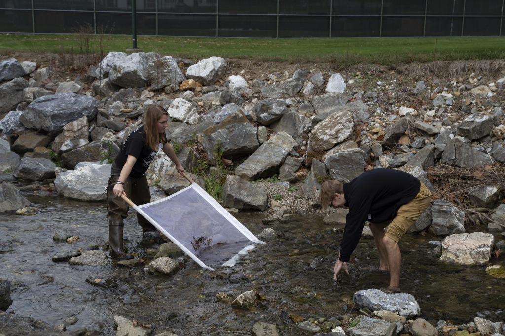 watershed coordinators in the stream with a macroinvertebrate kick net