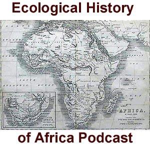 africa-copy.jpg