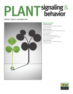 New article on plant resource transport and metabolism