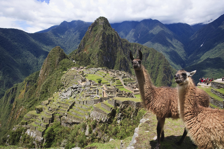 Jo Llama Macchu Picchu