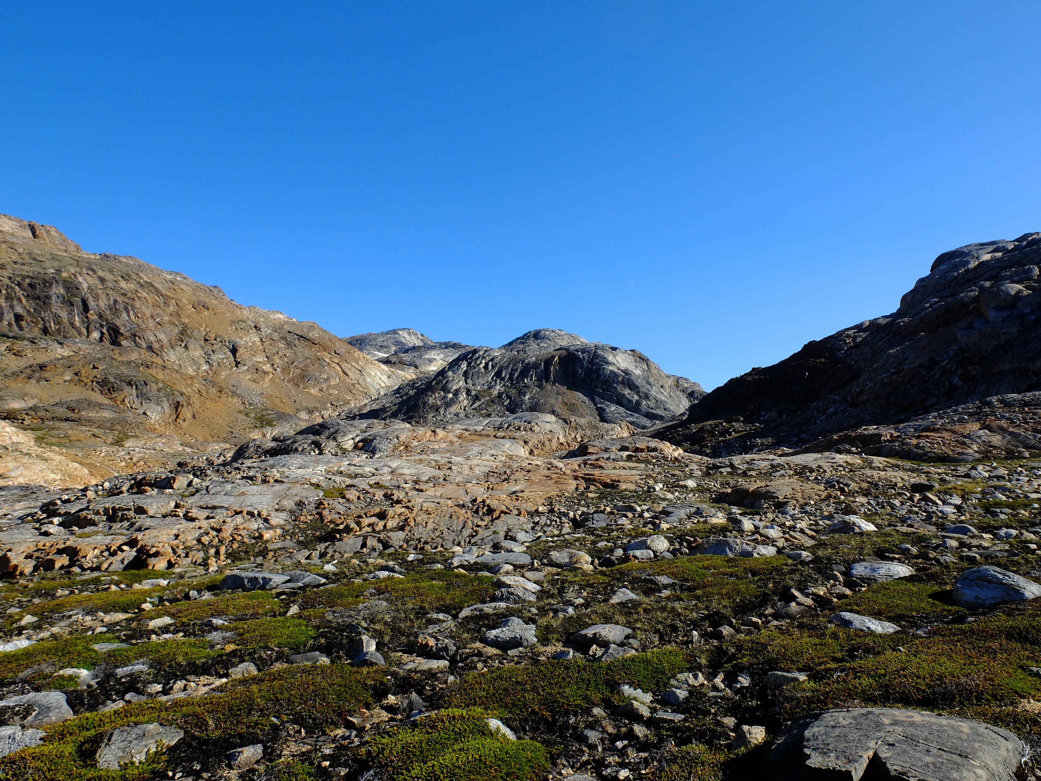 Soil development in Greenland