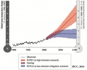 Global Emissions Projections