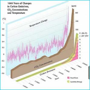 Temperature change over the past millenium