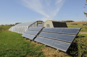 Solar Panels by a High Tunnel on Dickinson Farm