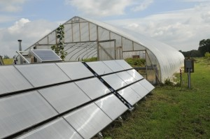 Solar Array Next to Greenhouse, which powers our solar water heater.