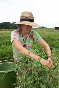 Claire Fox, Graduate Intern, harvests produce in 2011.