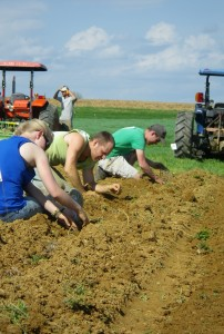 Student farmers working on a summer day.