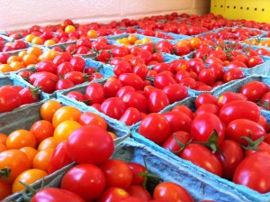 Cherry tomatoes from Dickinson Farm.