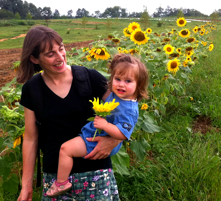 Picking sunflowers during Children's Day at the farm.