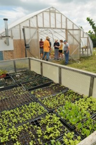 Greenhouse and cold frame at Dickinson Farm.