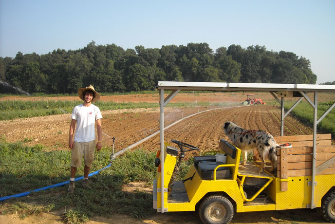 Brendan Murtha '14 and a section of the farm's state-of-the-art irrigation system. Beloved farm mascot Bella is seeking relief from the sun on the farm's solar-powered vehicle. (Photo courtesy of John Henson)