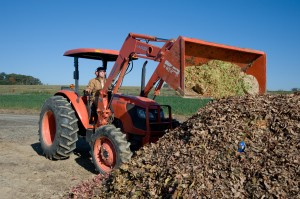 A compost pile (windrow) is mixed using a front-loading tractor at Dickinson Farm.