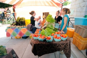 Dickinson students shop at the Dickinson Farm stand at Carlisle's weekly farmers' market.