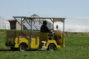 Matt Steiman, Solar Wheeler, Farm