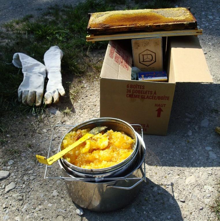 Backyard Beekeeping Equiment. Photo Credit: Flickr - EmmaJaneHW