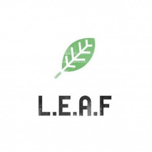 LEAF Project – Summer Internship