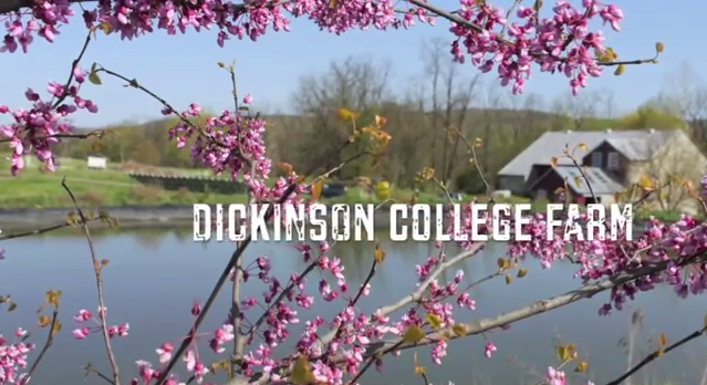 Free tours of Dickinson College Farm