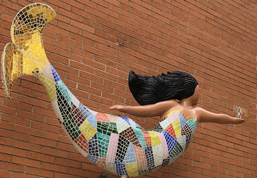 Mermaid at Norfolk's General Hospital