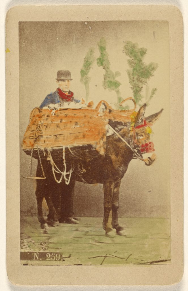 Unidentified man with mule carrying baskets of food. Italy, 1870s. Source: J. Paul Getty Museum