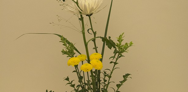 On October 2, 2013, a small Ikebana workshop was conducted by Ellen Kelly, a member of Harrisburg Chapter, Ikebana International. Ellen Kelly lived in Japan for over 5 years and […]