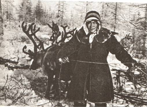 Dolgan Reindeer Herder Source: Public Domain, www.commons.wikimedia.com