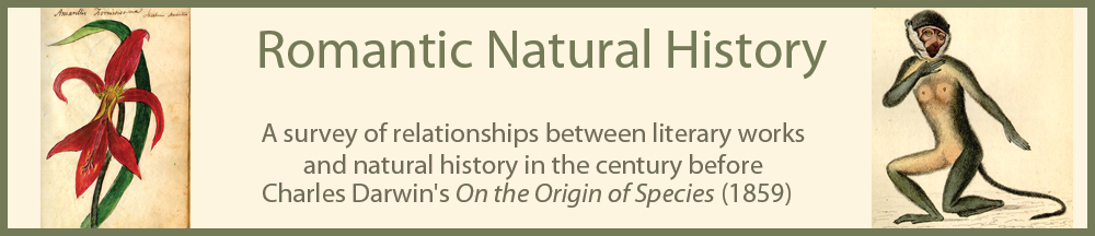 Romantic Natural History